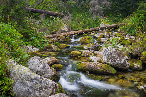 Stream, High Tatras