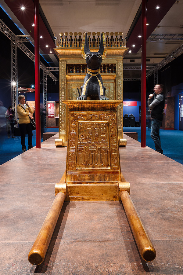 A treasure case with Anubis statuette (the god of Afterlife)