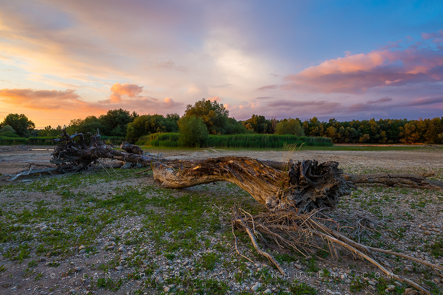 Cold June weather and strong evening wind were the perfect ingredients to this sunset on this temporarily dried out riverbed. These dead trees are usually submerged in the waters of river Váh. Every few years, the maintenance procedures on the nearby power station dry out the river bed for a short period of time. This year however, this is a natural phenomenon. The riverbed has almost completely dried out and even weed is starting to grow through the stones. Váh is the longest Slovak river (403 kilometers) and has a system of 22 water dams with power stations.