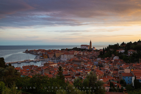 Purple Morning, Piran, Slovenia
